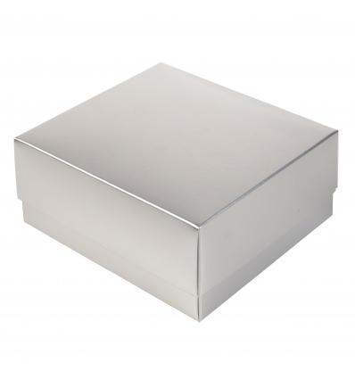 Silver Gift Box & Lid [B/63009]
