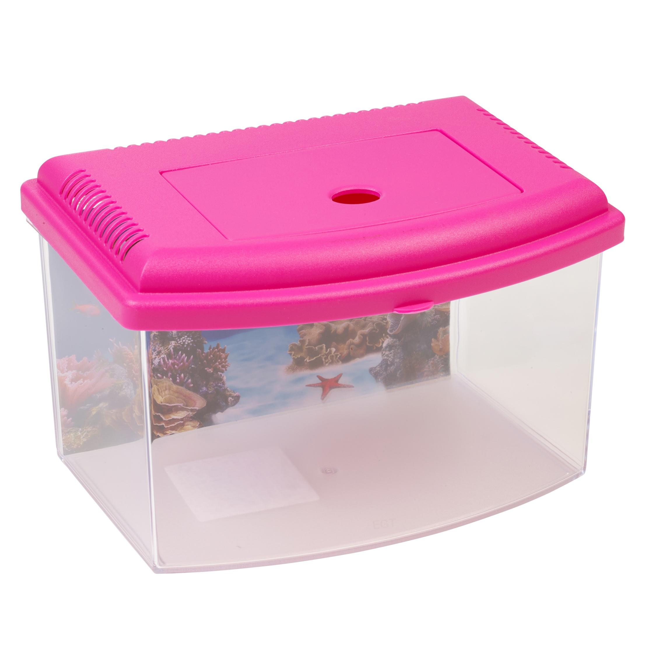 6 litre starter aquarium fish reptile insect tank vivarium for Pink fish tank