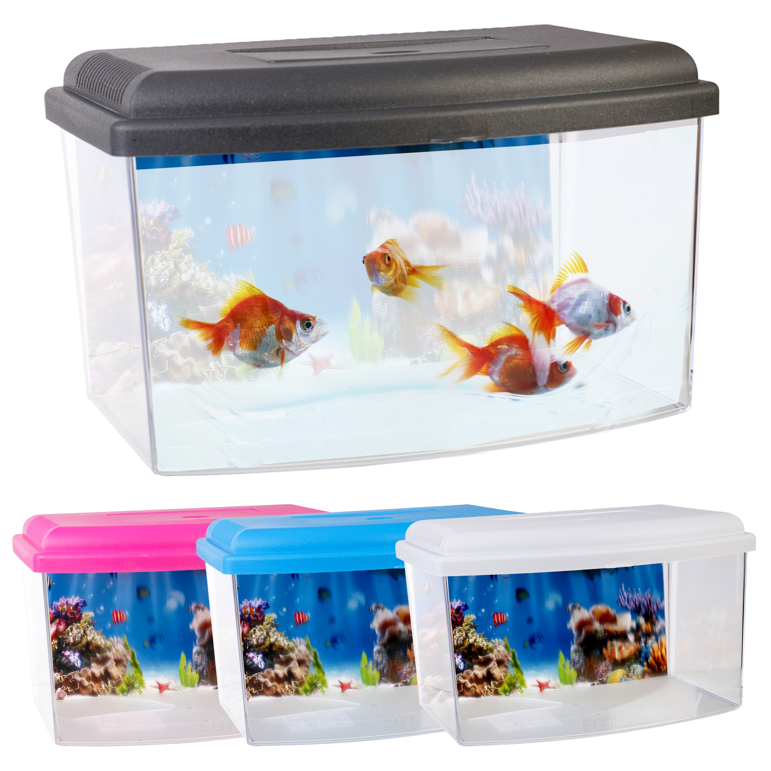... Starter Aquarium With Lid & Handle 2.5 Litre Capacity Fish Tank New