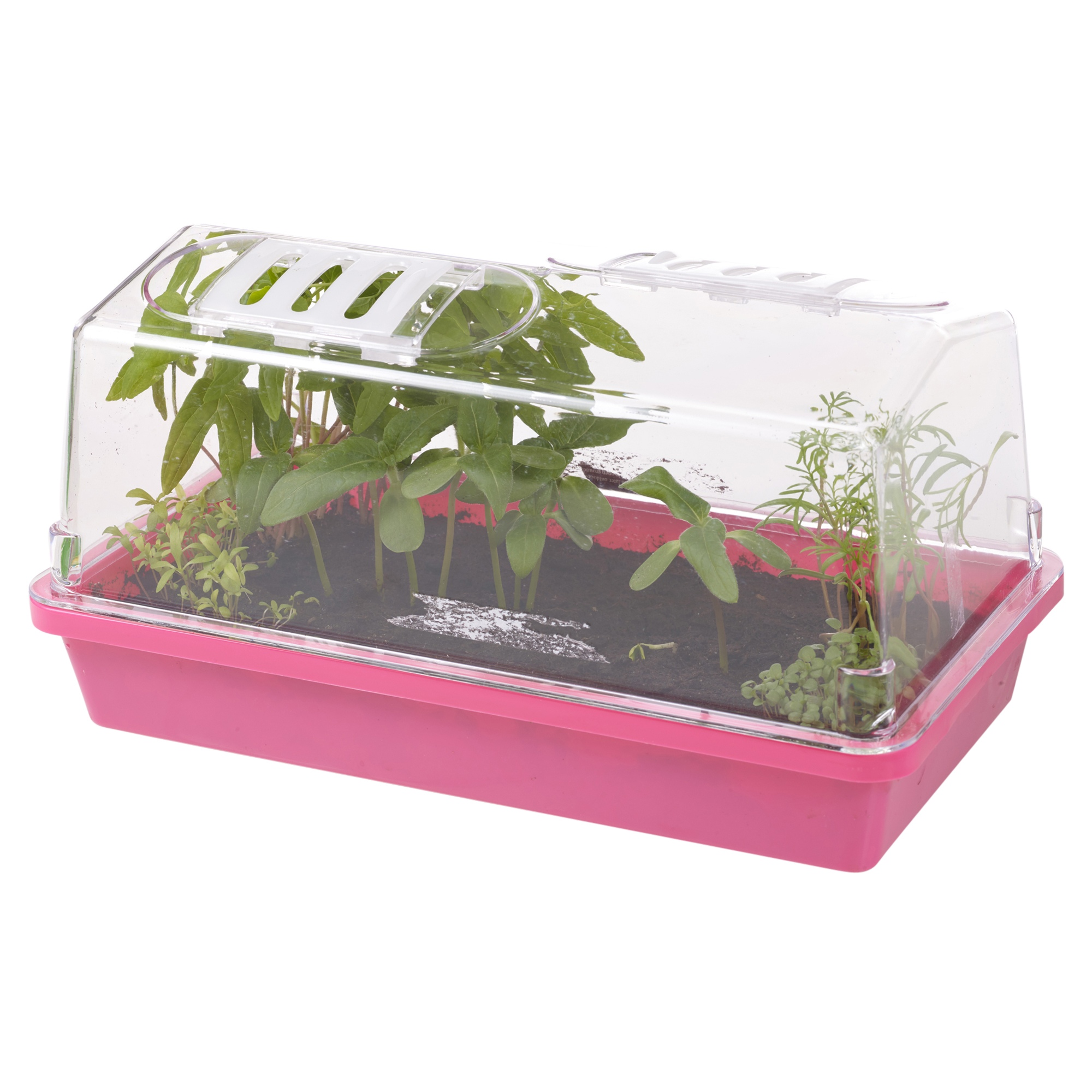 Indoor propagator home grow planter kit vegetables herbs for Portable vegetable garden
