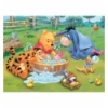 30 - Piglet is taking a bath [181982]