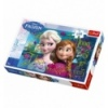 100 - Anna and Elsa [162554]