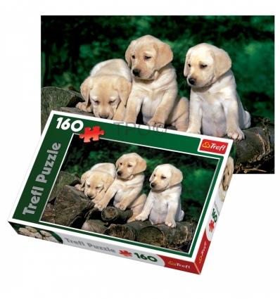160 - Puppy labradors [151572]