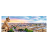 1000 Panorama - View from the Cathedral of Notre-Dame de Paris [290295]