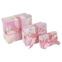 Gift Box 3Pc Pink Kids Toy Print W/ Ribbon [415064]