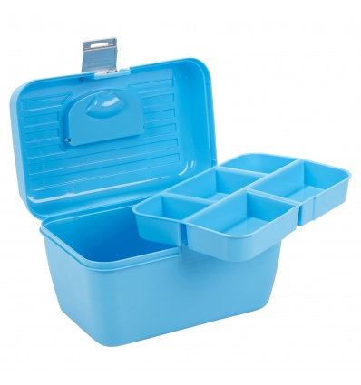Storage Case With Removable Tray [368263]
