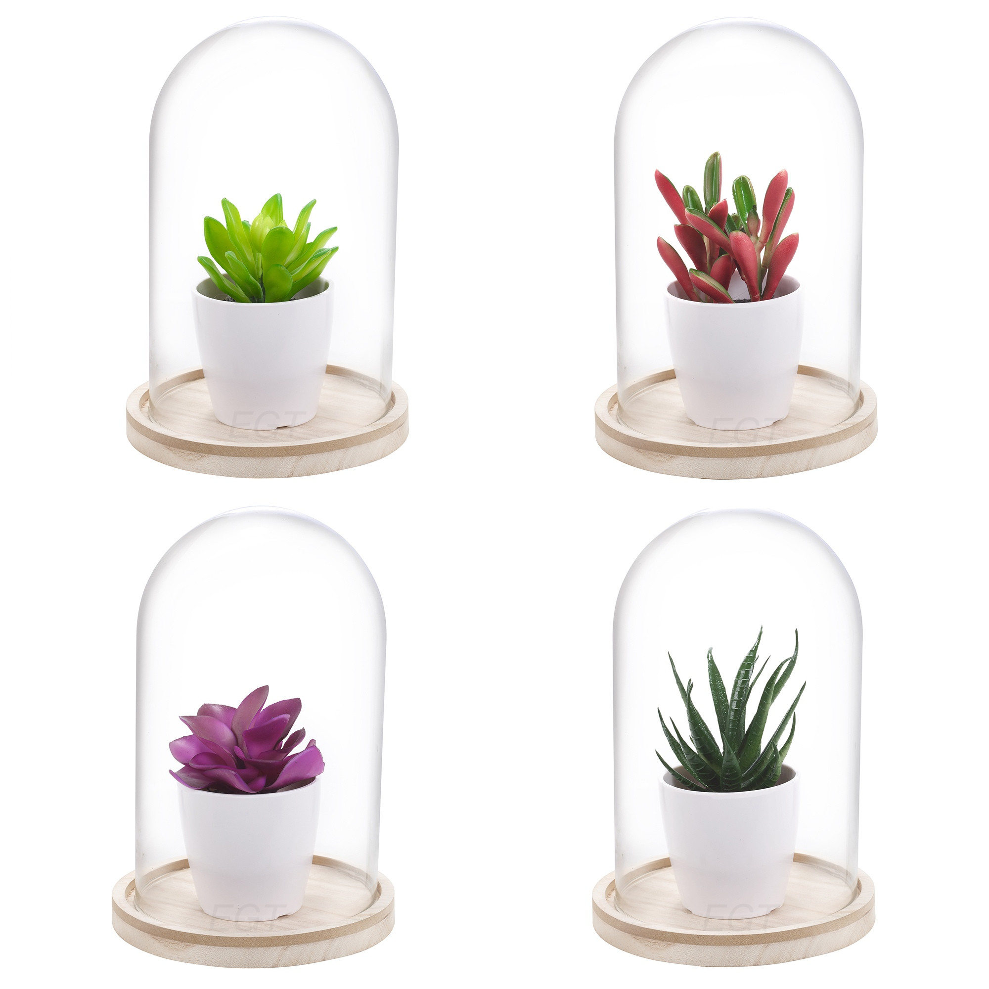 Artificial Plant In Glass Dome Bell Jar Display Decorative