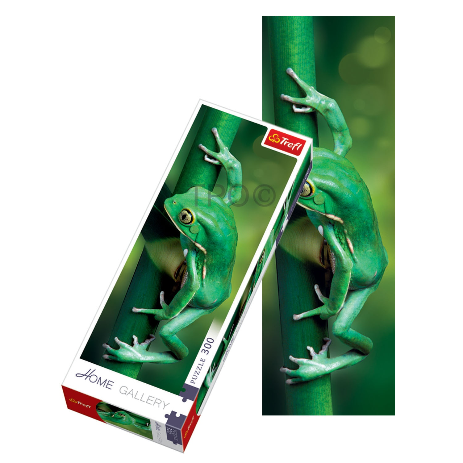 Details about Trefl 300 Piece Adult Large Home Gallery Frog Climbing Stalk  Jigsaw Puzzle NEW