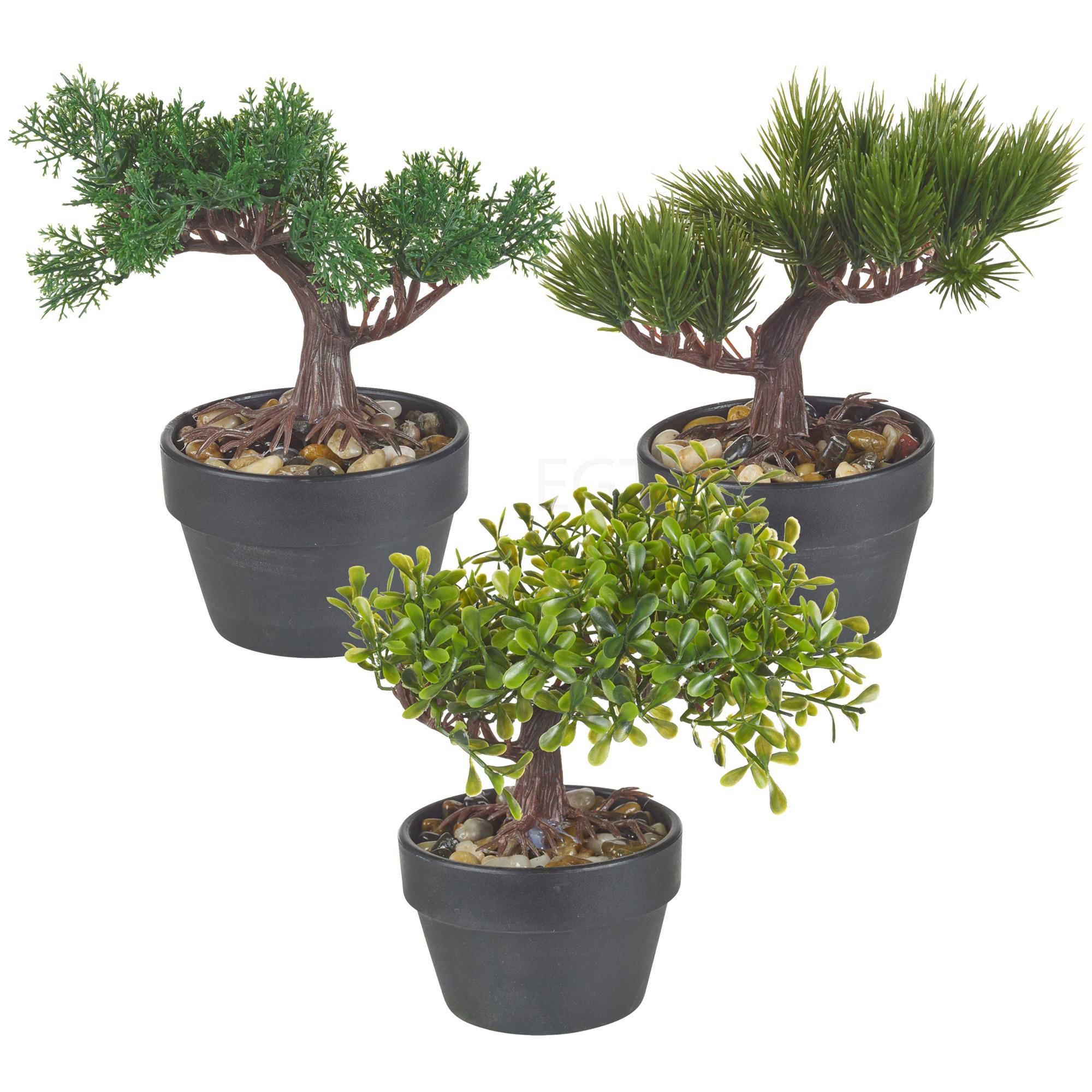 artificial office desk green bonsai tree black plant pot. Black Bedroom Furniture Sets. Home Design Ideas