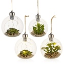 Set of 4 Assorted Hanging Led Plants [477689]