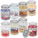 Lilly Lane 18oz Candles in Jar Winter Edition