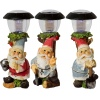 Solar Light Gnome 30cm Outdoor Lights [385136]