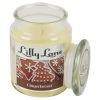 Lilly Lane 18oz Candle in Jar Winter Ediition
