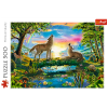 """Puzzles - """"500"""" - Lupine nature [37349]"""
