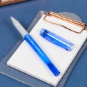 PaperMate  Erasable Gel Pen []