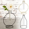 Glass Tubes Vases with Metal Frames