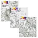 Colour In Blank Canvas [329699]